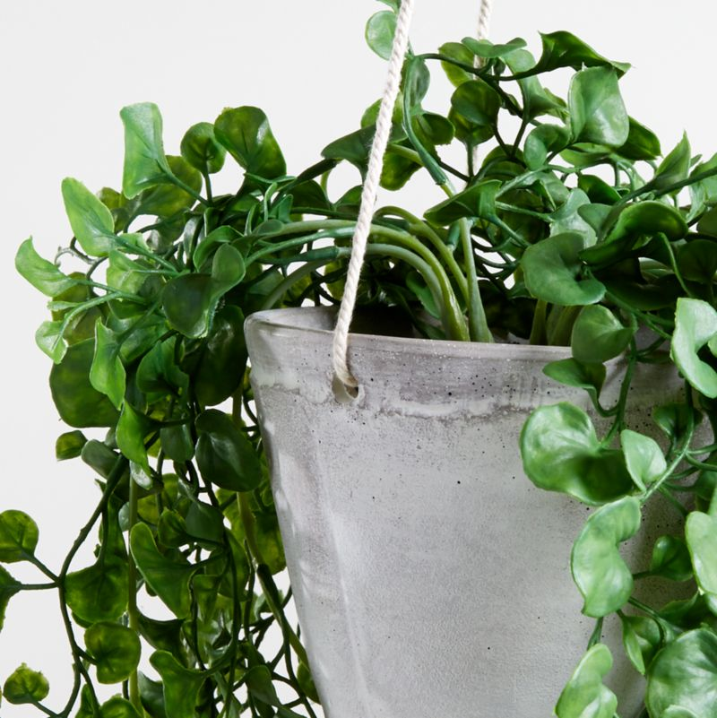Artificial Trailing Ficus Hanging Plant In Pot Reviews Crate And Barrel Canada